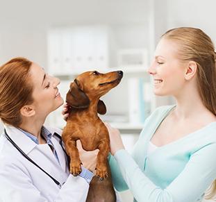 Pet Owner Virbac Backhome